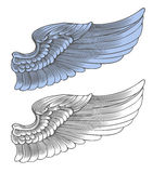 Wing in engraving style Stock Photography