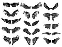 Wing natural detailed set Royalty Free Stock Photo
