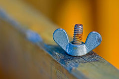 Wing nut and screw bult Royalty Free Stock Photos