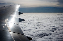 Wing Royalty Free Stock Image