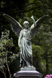 Winged angel. Standing on a grave yard royalty free stock photo