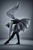 Winged ballerina in monochrome Stock Photography