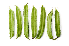 Winged bean Royalty Free Stock Photography