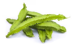 The winged bean. On white background stock images