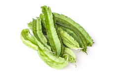 Winged beans Royalty Free Stock Photography