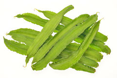 Winged Beans, Angled Beans Royalty Free Stock Image