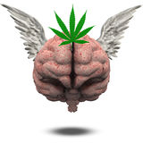 Winged Brain Marijuana Leaf Stock Images