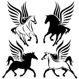 Winged horses vector. Black and white pegasus design - winged horses set Stock Photography