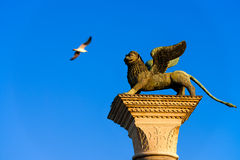 Winged lion. Venice's symbol the winged lion Stock Photos