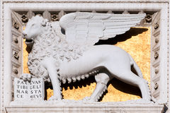 Winged lion of Saint Mark. Winged lion Saint on the building at Venice Square in Rome, Italy Royalty Free Stock Images