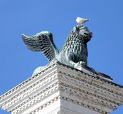 Winged lion statue in piazza san marco in Venice and Seagull in Royalty Free Stock Images