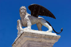 Winged lion of Venice standing on a column against the blue sky Stock Photography