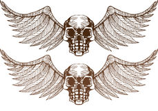 Winged Skulls Royalty Free Stock Photo