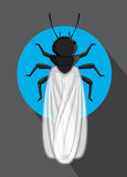 Winged Termite Vector Insect. Comic Winged Termite Vector Insect Royalty Free Stock Images