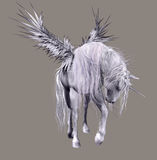 Winged unicorn Stock Photography