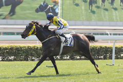 Wingold wins the Mount Parker Handicap in Hong Kong Stock Image
