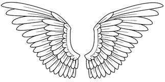 Wings. Illlustration of wings, drawn on PC Stock Photo