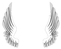 Wings Royalty Free Stock Photography