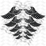 Wings Royalty Free Stock Images