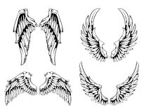 Wings. For your vintage design. Layered. All elements are grouped. Vector EPS 10 illustration Royalty Free Stock Photo
