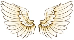 Wings. Illustration of a pair of wings Royalty Free Stock Image