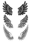 Wings. Vector image of various wings Royalty Free Stock Images