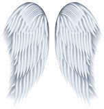 Wings. Royalty Free Stock Images