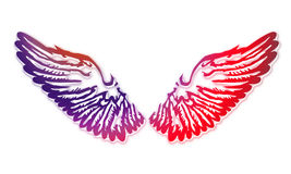 Wings. An illustration of the wings Royalty Free Stock Photo