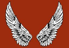 Wings. The angels wings as detailfor design Stock Images