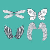 Wings  animal feather pinion bird freedom flight natural peace design vector illustration. Stock Photo
