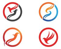 Wings bird sign abstract template icons app Stock Images