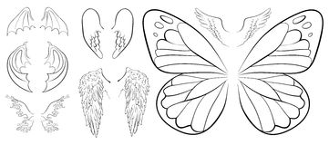 Wings collection Royalty Free Stock Image