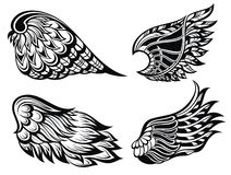 Wings collection Royalty Free Stock Photo