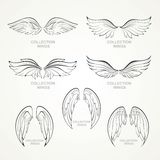 Wings collection royalty free illustration