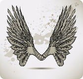 Wings of a crow. Vector illustration. Royalty Free Stock Images