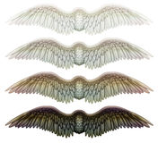 Wings. Digital illustration of wings. Isolated on white, they are ready to be composited with other images Stock Photo