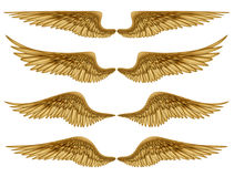 Wings. Digital illustration of wings. Isolated on white, they are ready to be composited with other images Royalty Free Stock Photos