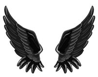 The wings of a fallen angel Royalty Free Stock Image