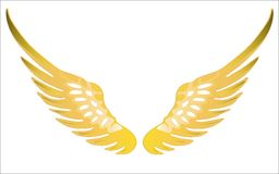 Wings Royalty Free Stock Image