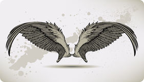 Wings Griffon, hand drawing. Vector illustration. Stock Photos
