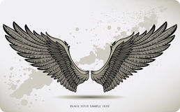Wings, hand drawing. Vector illustration. Royalty Free Stock Images