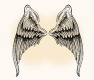 Wings - Hand Drawn. Set of hand drawn wings over artistic background Stock Image