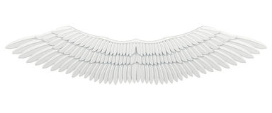 Wings isolated Royalty Free Stock Photo