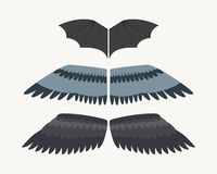 Wings isolated animal feather pinion bird freedom flight and natural hawk life peace design flying element eagle winged. Side shape vector illustration. Beauty vector illustration
