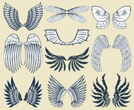 Wings isolated animal feather pinion bird freedom flight natural peace design vector illustration. Stock Photos