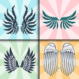 Wings isolated animal feather pinion bird freedom flight natural peace design vector illustration. Royalty Free Stock Photography