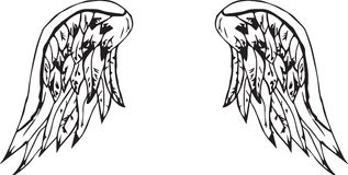 Wings. Isolated black angel or bird wings Royalty Free Stock Photos