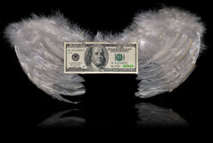 Wings of money Royalty Free Stock Image