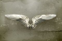 Wings old style vector. Wings, old style vector illustration icon Stock Photos