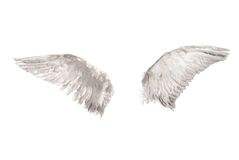 Wings over white. Two wings isolated on white background Royalty Free Stock Images